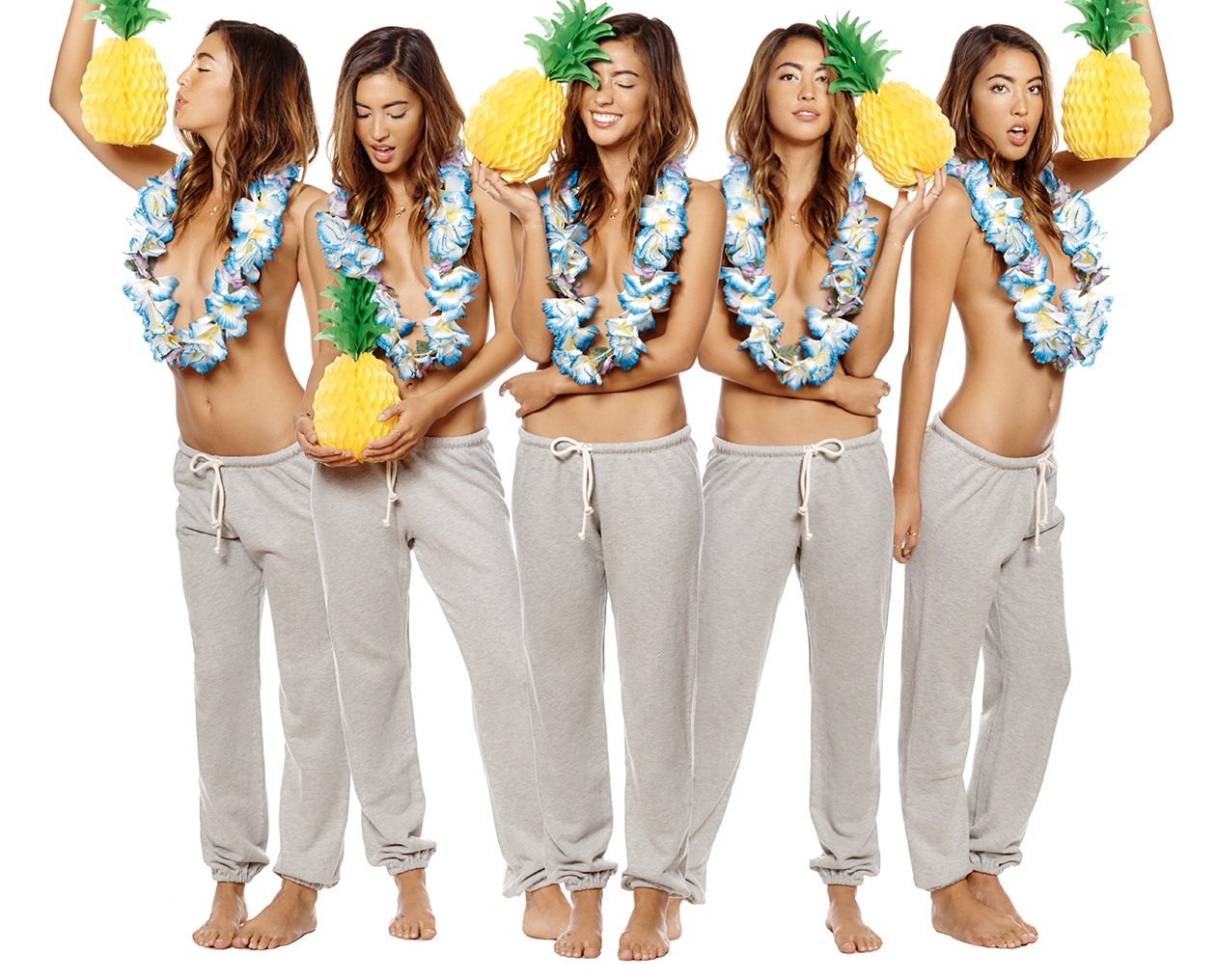 hula_pineapples_webres_2